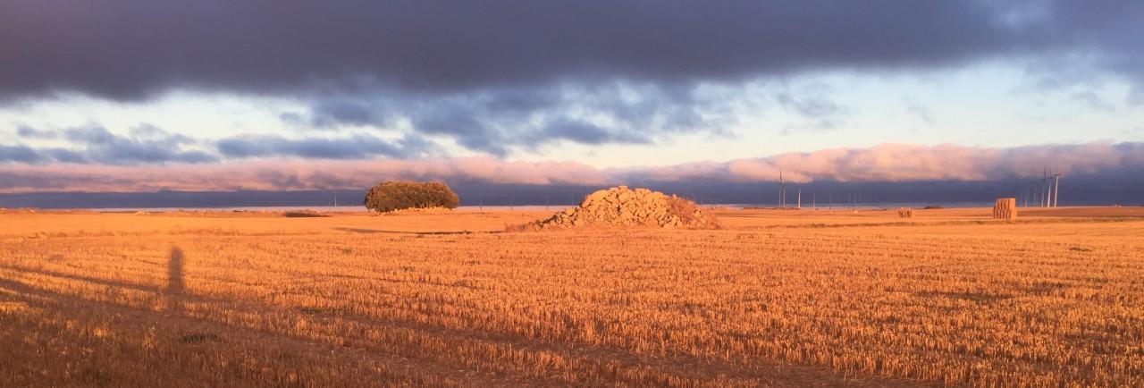 Solopgang på Caminoen - bæredygtige investeringer giver højere afkast